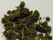 study-cannabis-a-double-edged-sword